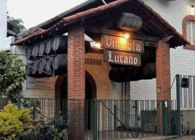 Conheça mais sobre a Vinícola Lucano
